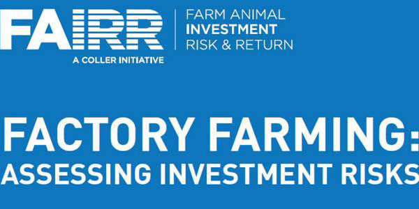 FAIRR Report Highlights Factory Farm Investment Risks